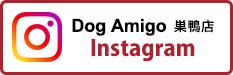 Dog Amigo 巣鴨店 インスタグラム