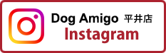 Dog Amigo 平井店 インスタグラム